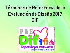 TdR DIF19